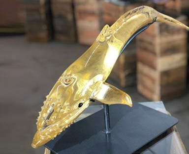 Gilded-Humpback-feature-img